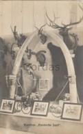 """Hunting - Wien 1910 Jagd Ausstellung - Pavillon """" Exotische Jagd """" - Caccia"""