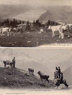 """SUISSE -- LOT De Deux Cartes -- """"Au Sommet De La Dent De Vaulion"""" § """"Mont-Blanc Et Aiguille Verte"""" -. - Suisse"""