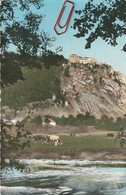 Pontarlier---fort De Joux---vaches - Pontarlier