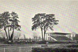 1 Cpsm Pau - Hippodrome Du Pont Long - Pau