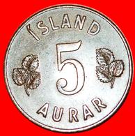 # GREAT BRITAIN BIRCH (1946-1966): ICELAND ★ 5 ORE 1946! LOW START ★ NO RESERVE! - Islandia