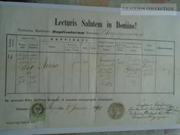 ZA185.13  Old Document Slovakia Nagyrépény, Nagyrippény, Nyitra Vel'ké Ripňany - 1870 - Anna KONCSINSZKY  -Hajek - Naissance & Baptême