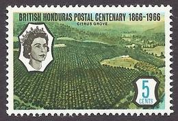 Honduras 1966 - Tourism, Landscapes, Paysages, Citrus Grove, Agriculture MNH - Honduras