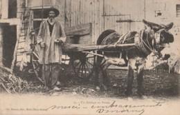 Z24-79) UN ATTELAGE EN POITOU : VIEIL HOMME ET SON ANE - EDITEUR CH. MOREAU A MELLE , DEUX SEVRES - 1903 - 2 SCANS - France