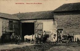 52 - BROUSSEVAL - Ferme De La Haute-Maison - France
