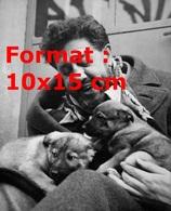Reproduction D'une Photographie Ancienne De Michel Simon Avec Deux Chiots Sur Lui - Reproductions