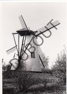 NIL St VINCENT/St MARTIN  Molen / Moulin Du Tiege - Originele Foto Jaren '70 A.Carre (Q75) - Walhain