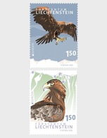 Liechtenstein - Postfris/MNH - Complete Set Europa, Nationale Vogels 2019 - Ongebruikt