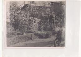 Photo ( 24 X 18 Cm ) Homme Qui Cultive Son Jardin - Personnes Anonymes