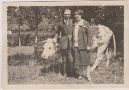 Photo 14 Fleury Sur Orne  Vache Vers 1926 - Photos