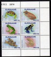 Suriname 2624/29 Grenouilles, Frog - Frösche
