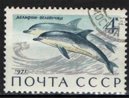 URSS - 1971 - Dolphins - USATO - Oblitérés