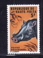 ALTO VOLTA HAUTE VOLTA UPPER VOLTA BURKINA FASO 1966 FAUNA ANIMALS ANIMAUS ANIMALI WARTHOG FACOCERO 5fr MNH - Alto Volta (1958-1984)