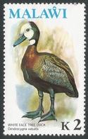 Malawi 1975 Birds. 2k MNH. SG 504 - Malawi (1964-...)
