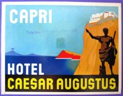 HOTEL ALBERGO PENSIONE MOTEL CAESAR AUGUSTUS CAPRI ITALIA ITALY TAG DECAL STICKER LUGGAGE LABEL ETIQUETTE AUFKLEBER - Etiketten Van Hotels