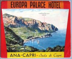 HOTEL ALBERGO PENSIONE MOTEL CAMPING EUROPA PALACE CAPRI ITALIA ITALY DECAL STICKER LUGGAGE LABEL ETIQUETTE AUFKLEBER - Etiketten Van Hotels
