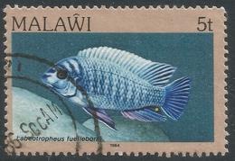Malawi 1984 FIsh. 5t Used. SG 690 - Malawi (1964-...)
