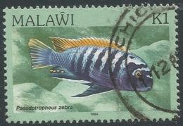 Malawi 1984 FIsh. 1k Used. SG 700 - Malawi (1964-...)
