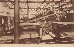 Sint-Gillis-bij-Dendermonde - S.A. Flandria - Een Zicht Der Glansmachienen - Une Vue De Machines - Factory Cotton Mill - Dendermonde