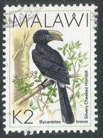 Malawi 1988 Birds. 2k Used. SG 802 - Malawi (1964-...)