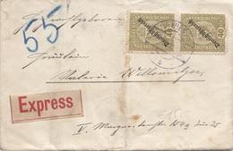 ÖSTERREICH EXPRESS ROHRPOST 1919 - 2 X 40 Heller Auf Brief Gel.mit Rohrpost V. Wien > ? - Plaatfouten & Curiosa