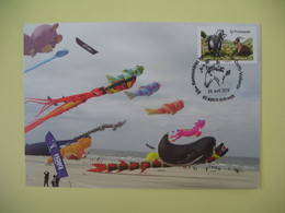 Carte 2015 -  29 ème Rencontres Internationales De Cerfs-volants Cachet Berck-sur-Mer - Expositions
