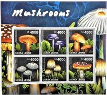 # Sierra Leone 2013**Mi.5834-39  Mushrooms , MNH [11;141] - Pilze