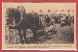 AGRICULTURE --  L'Arrachage Mécanique - Cultures