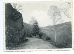 Bertrix Environs Route Des Hayons - Bertrix