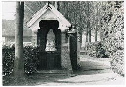 Kruishoutem, Lozer, O.L.Vrouw Van Smarten, Bid Voor Ons (pk55669) - Kruishoutem