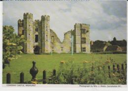 Postcard - Cowdray Castle. Midhurst - Unused Very Good - Postcards