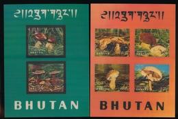 BHUTAN 1973 YVERT BF-56-57, MUSHROOM - MINIATURE SHEETS - Bhoutan
