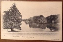 Bruxelles Bois De La Cambre Le Lac - Foreste, Parchi, Giardini