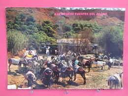 Espagne - Callosa De Ensarria - Alicante - Burros Taxi Del Algar - Scans Recto-verso - Alicante