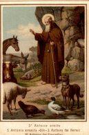 CHROMO  IMAGE RELIGIEUSE CHICOREE BLEU-ARGENT ARLETTE & Cie CAMBRAI  SAINT ANTOINE  ERMITE - Devotion Images