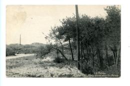 La Panne - Partie Boisée Dans Les Dunes / Maison Devolder, Oplieger & Noulet (1909) - De Panne