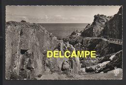 DF / 22 CÔTES D' ARMOR / LE VAL-ANDRÉ / LA POINTE DE LA LINGOUAR ET SES BELLES PROMENADES / 1958 - France