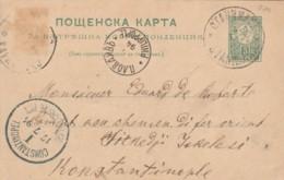 INTERO POSTALE BULGARIA 1894 TIMBRO ARRIVO COSTANTINOPOLI (EX438 - 1945-59 République Populaire