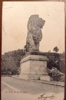 Liege La Lion De La Gileppe 1903 - Liège