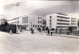 Macedonia Bitola 1965 / Bicycle - Macédoine