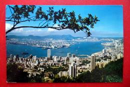 Hongkong - China - 香港 - Panorama - Hafen - 1977 - Chine (Hong Kong)