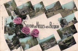 Cp Souvenir Multivues De NIELLES LES BLEQUIN - Autres Communes