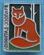 USSR / Badge / Soviet Union / RUSSIA /  Leningrad Zoo. Fauna. Fox. - Animales