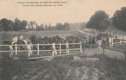 27 - BEC HELLOUIN - Annexe De Remonte - Travail Des Jeunes Chevaux Sur Piste - France