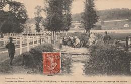 27 - BEC HELLOUIN - Annexe De Remonte - Travail Des Jeunes Chevaux Sur Piste Et Passage De Rivière - France