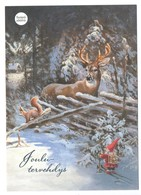 Postal Stationery Finland - CHARITY - CANCER FOUNDATION - GNOME - DEER - SQUIRREL - Postage Paid - Port Payé - Finland