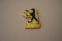 20190321-2618 FCSM CLUB DE SOCHAUX MONTBELIARD SECTION TENNIS LION - Football