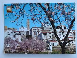 Carte Postale : OROPESA DEL MAR Vista Parcial - Castellón