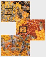 H01 Croatia 2019 Croatian Fauna Carniolan Honey Bee Maxi Cards - Croatie