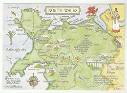 MAP Of NORTH WALES Postcard Caernarfon Anglesey Llangollen Snowdon Mountain Castle Bridge Hunting Horse Dog Dogs Ship - Caernarvonshire